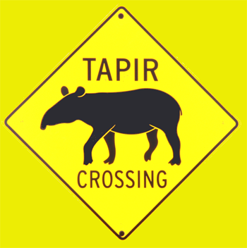 tapir, suncreeklodge, suncreek lodge